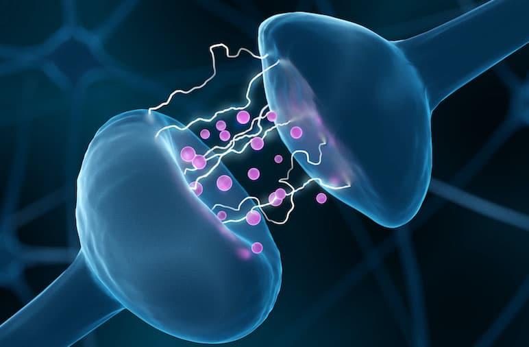 Brain Chemistry Panel | Nava Health & Vitality Center