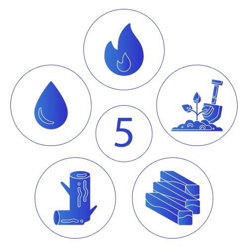 5 Elements | Nava Health & Vitality Center