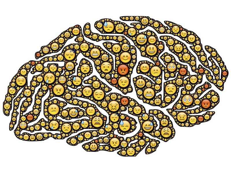 Mood swings depicted in a brain graphic